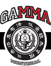 Gelinas Academy for Mixed Martial Arts